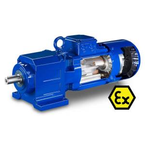 Bauer IE4 Gear Motor-hazardous