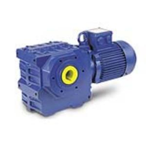 Bauer Worm Geared Motor - BS Series