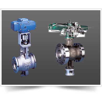 CONCENTRIC SEGMENTAL BALL VALVE